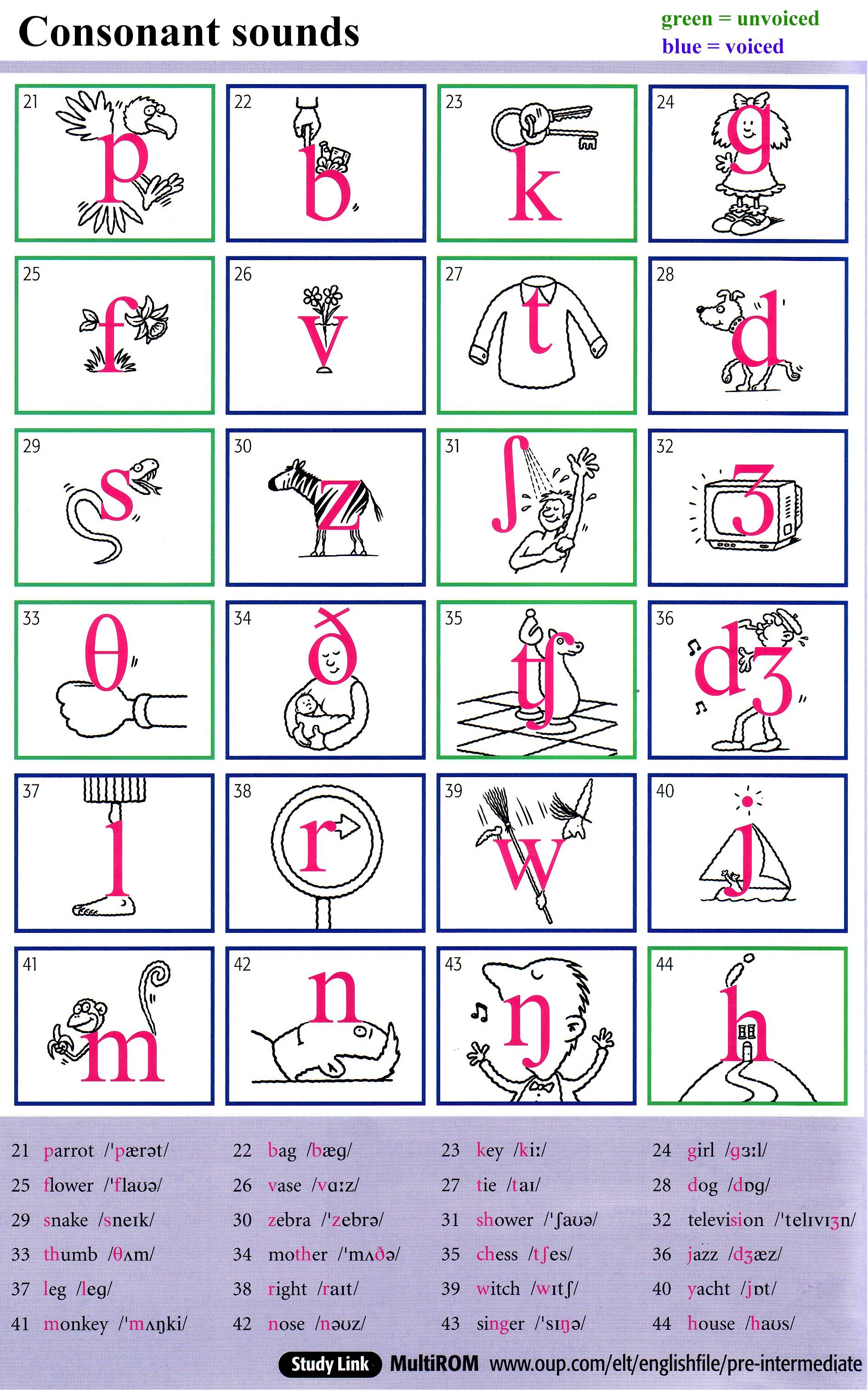 The English Phonetic Alphabet